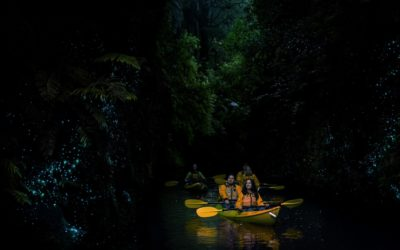 Lake_District_Adventures_Glowworms-SJP-5