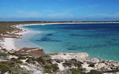 Western Australia's newest National Park – the Houtman Abrolhos Islands