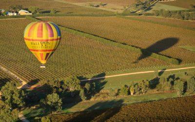 Fly high over the Barossa Shiraz Estate