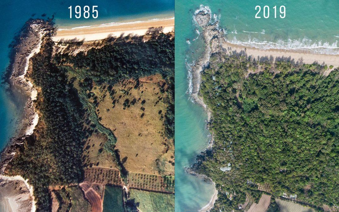 Australian Ecotourism in practice